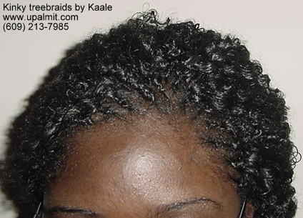 Treebraids- kinky treebraids with bun, top view.