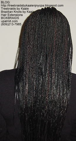 Long Box Braids in NJ, Back.