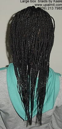 Large Box Braids, NJ.