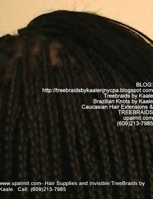 Long Box Braids with Treebraids on top in NJ, Back.