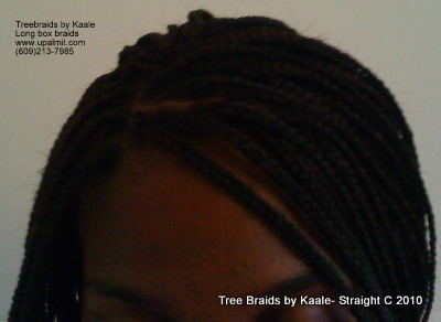 Box braids, top view 6.