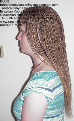 Microbraids and Treebraids by Kaale, Left100.