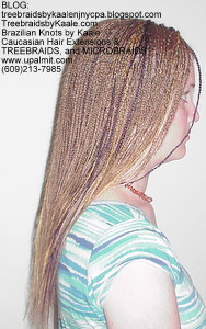 Microbraids and Treebraids by Kaale, Right101.