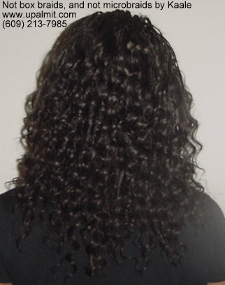 Not box braids styles, not microbraids- Medium Microbraids, back view.