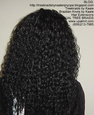 Curly Treebraids, KAALE Brand ABack137.