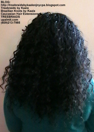 Tree Braids- Cornrows with Deep Bulk human hair Back2284.