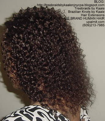 Cornrow Tree Braids Kinky curly Left174.