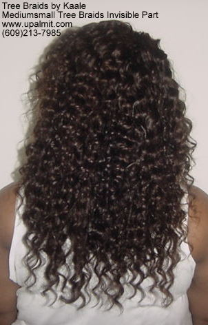 Mediumsmall tree braids with signature Invisible part, Back300.