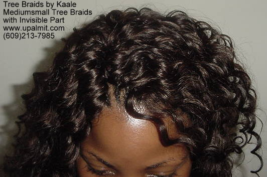 Mediumsmall tree braids with signature Invisible part, Top301.