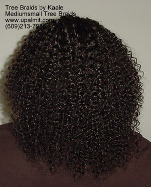 Summer Kinky curly Tree Braids- Back.