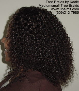Summer Kinky curly Tree Braids- Left.