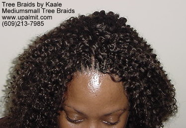 Summer Kinky curly Tree Braids- Top2.