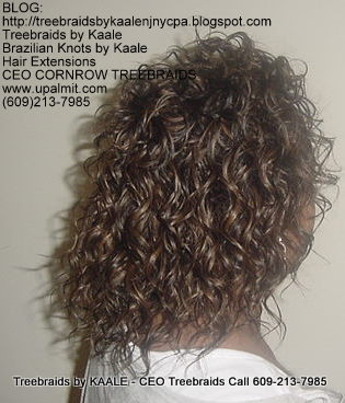 Treebraids by KAALE- Wavy CEO Treebraids, Right2203.