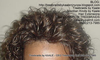 Treebraids by KAALE- Wavy CEO Treebraids, Top2204.