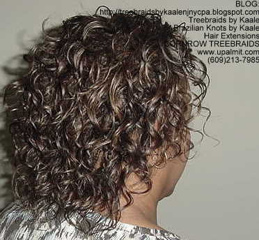 Treebraids by KAALE- Wavy, Right2169.