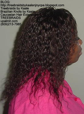 Tree Braids with Wet n wavy human hair 1Pk Right308.