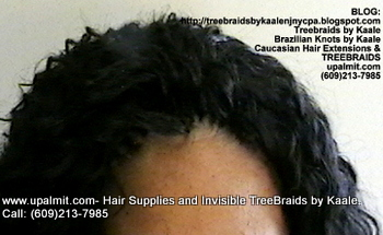 Tree Braids- Cornrows with Wavy human hair, Top2362.