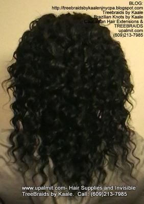 Tree Braids- Cornrows with Deep Bulk human hair, Corporate Back2320.