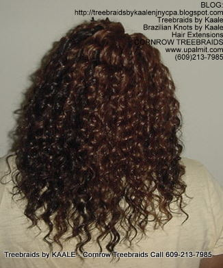 Tree Braids using KAALE Brand Deep Bulk human hair Back209.