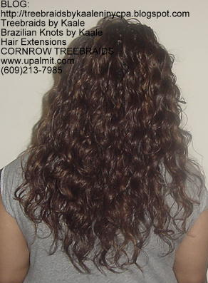 Treebraids by KAALE- Wavy, Back2173.