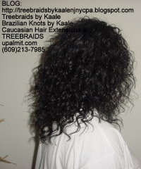 Tree Braids with Wet n Wavy human hair Right2219.