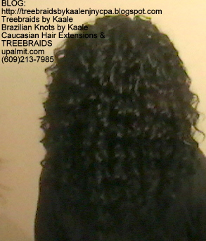 Tree Braids- with wavy human hair Back2248.