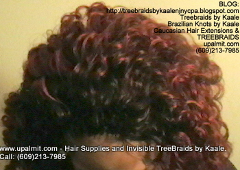 Tree Braids- Cornrows with Wet n Wavy human hair, Top2331.