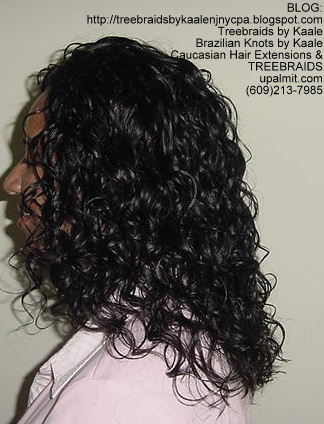 Treebraids with Wavy human hair Left2178.