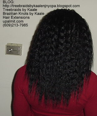 Wavy and Curly Tree Braids- Mediumsmall- Back143.