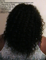 Tree Braids- Individuals with wavy hair, Back2416.