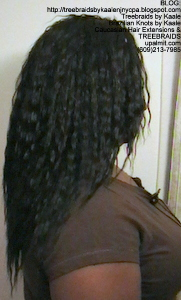 Tree Braids- Cornrows with Kaale brand loose Wet n Wavy human hair, Long Right2389.