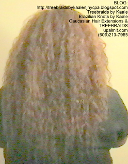 Tree Braids- Individuals with Wet and Wavy human hair Back2256.