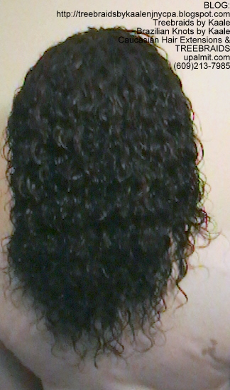 Tree Braids- Cornrows and Individuals in Wet n Wavy Back2280.