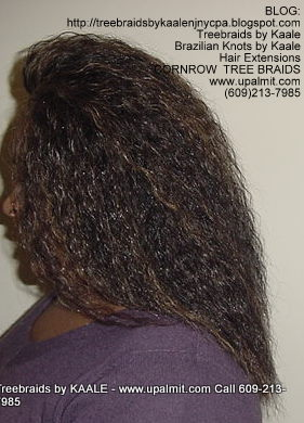 Wet and wavy Treebraids, Left238.
