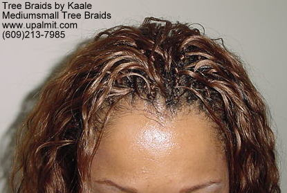 Tree Braids- Top.