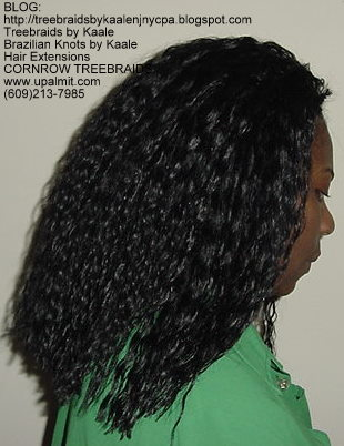 Tree Braids- Wavy Tree Braids Left223.