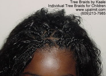Individual Tree Braids- African hair braiding for children.