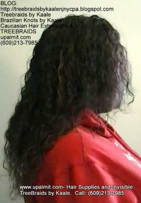 Tree Braids with KAALE Brand Wet n Wavy own human hair Right360.
