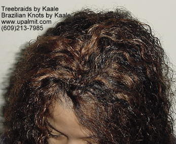 Wavy Tree Braids- Mediumsmall, Top210.