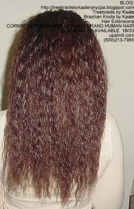 Cornrow Tree Braids Wet n wavy human hair Back185.