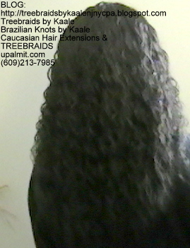 Tree Braids- with Wet and Wavy human hair Back2252.