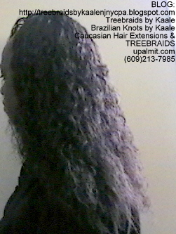 Tree Braids- with Wet and Wavy human hair Left2253.