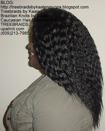Tree Braids with Wet n Wavy KAALE Brand human hair Left323.