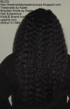 Wet n Wavy Tree Braids, Kaale Brand Back141.