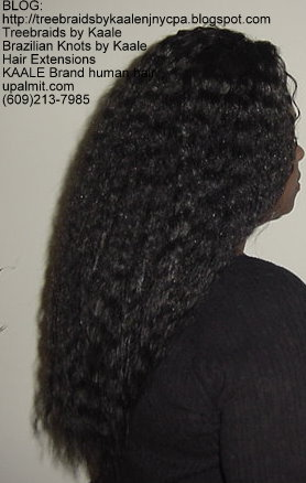 Wet n Wavy Tree Braids, Kaale Brand hair Right143.