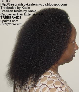 Tree Braids- Remy Wet n Wavy Right2231.