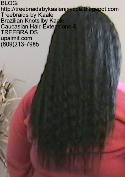 Tree Braids- with Wet n Wavy human hair Back2243.