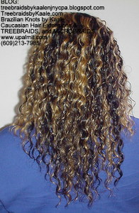 Tree Braids by Kaale- cornrow treebraids with blonde streaked hair Back view.