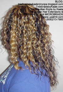 Tree Braids by Kaale- cornrow treebraids with blonde streaked hair Left view.