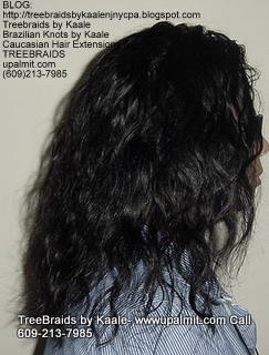 Treebraids with Body Wave Right2165.
